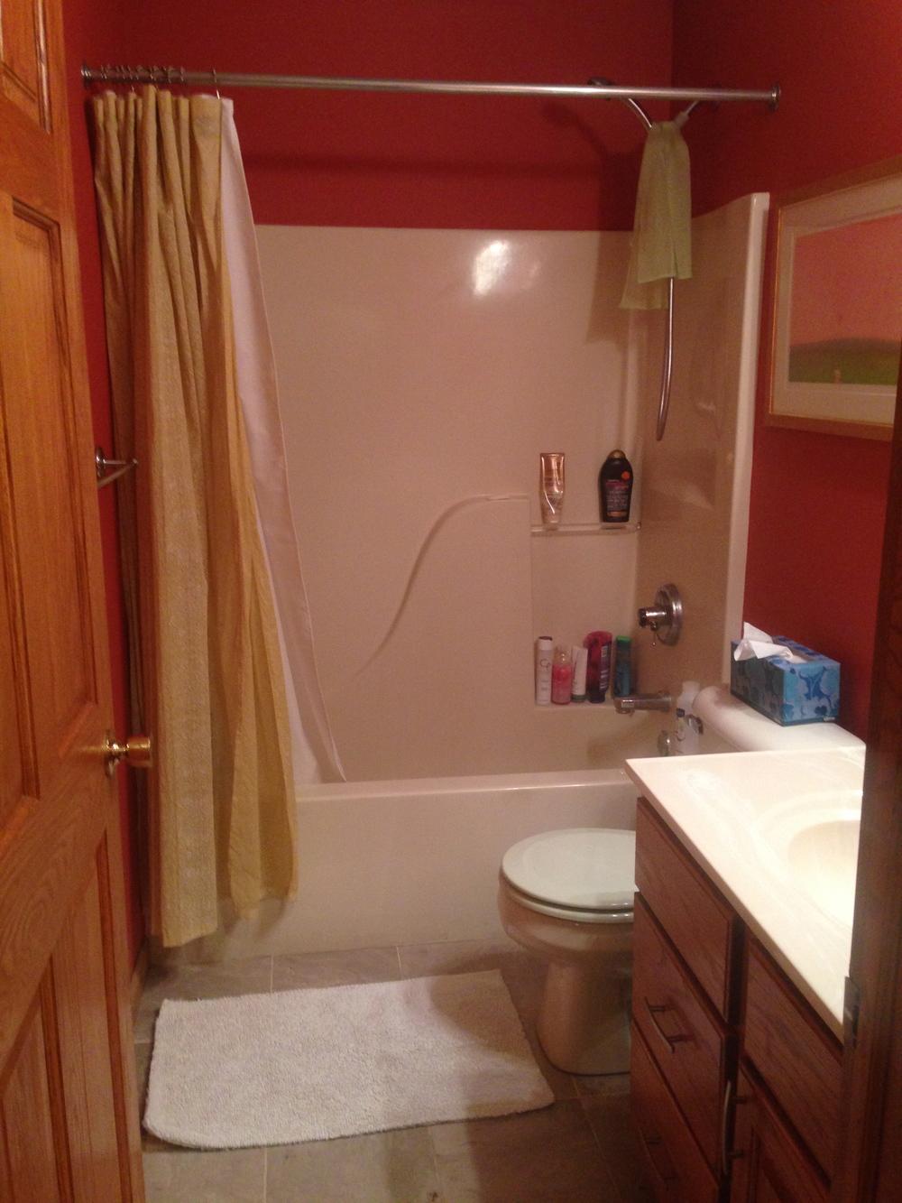 bathroom before fiberglass shower