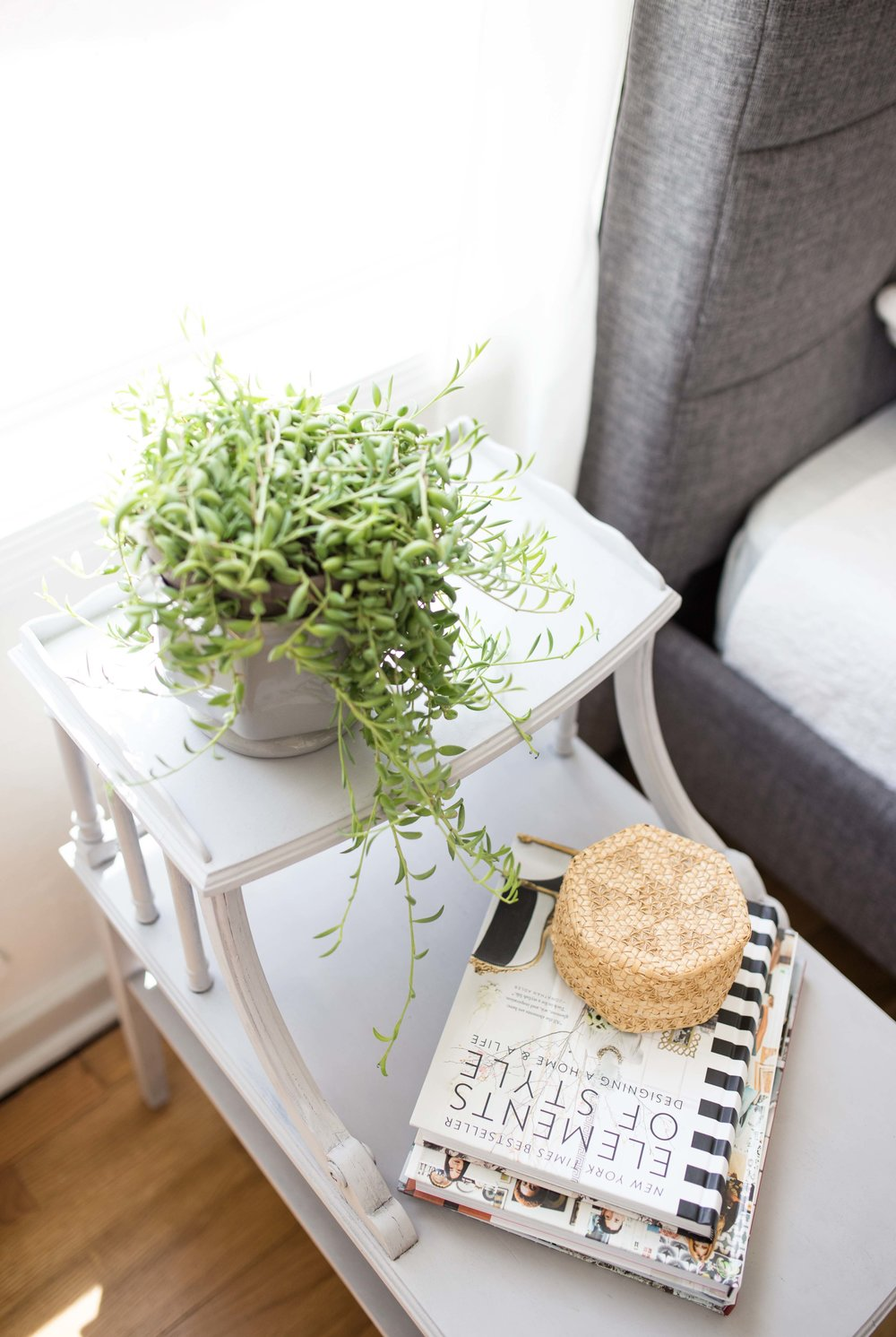 plant on side table staging