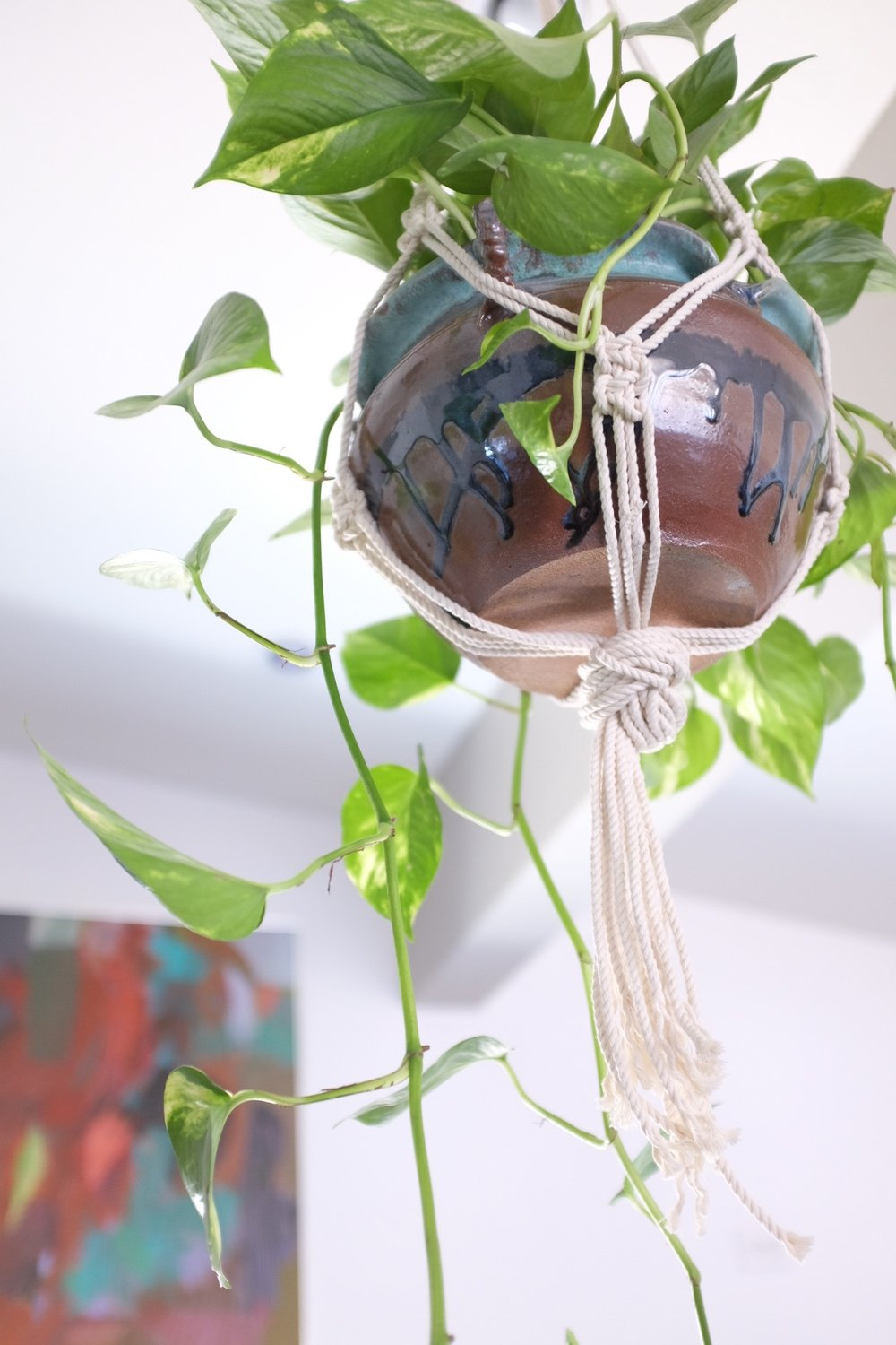 Macrame Hanging Plant in Kitchen