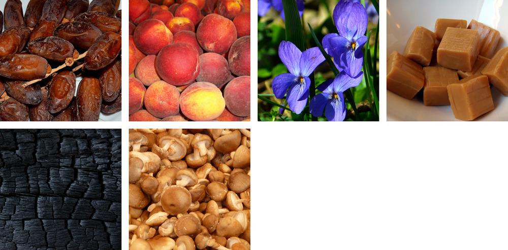 Date / Peach / Violet / Caramel / Charcoal / Shittake Mushroom