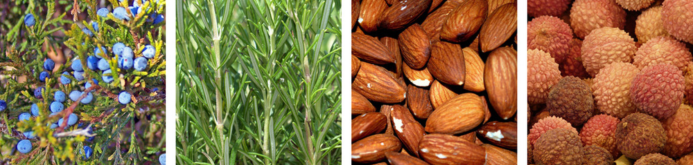 Juniper / Rosemary / Almond / Lychee