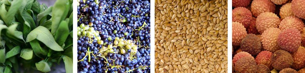 Sage / Grape / Sesame / Lychee
