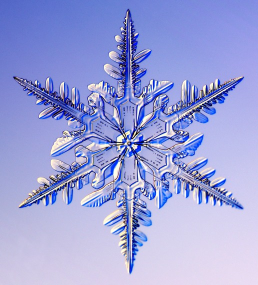 Crystal Bliss: A History of Snowflake Photography