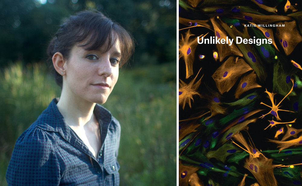 Katie Willingham, author of  Unlikely Designs  (University of Chicago Press, 2017) and contributor to  Issue Nineteen .