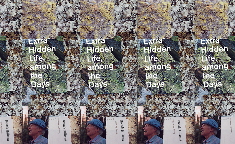 Extra Hidden Life, among the Days , by Brenda Hillman (Wesleyan University Press, 2018).