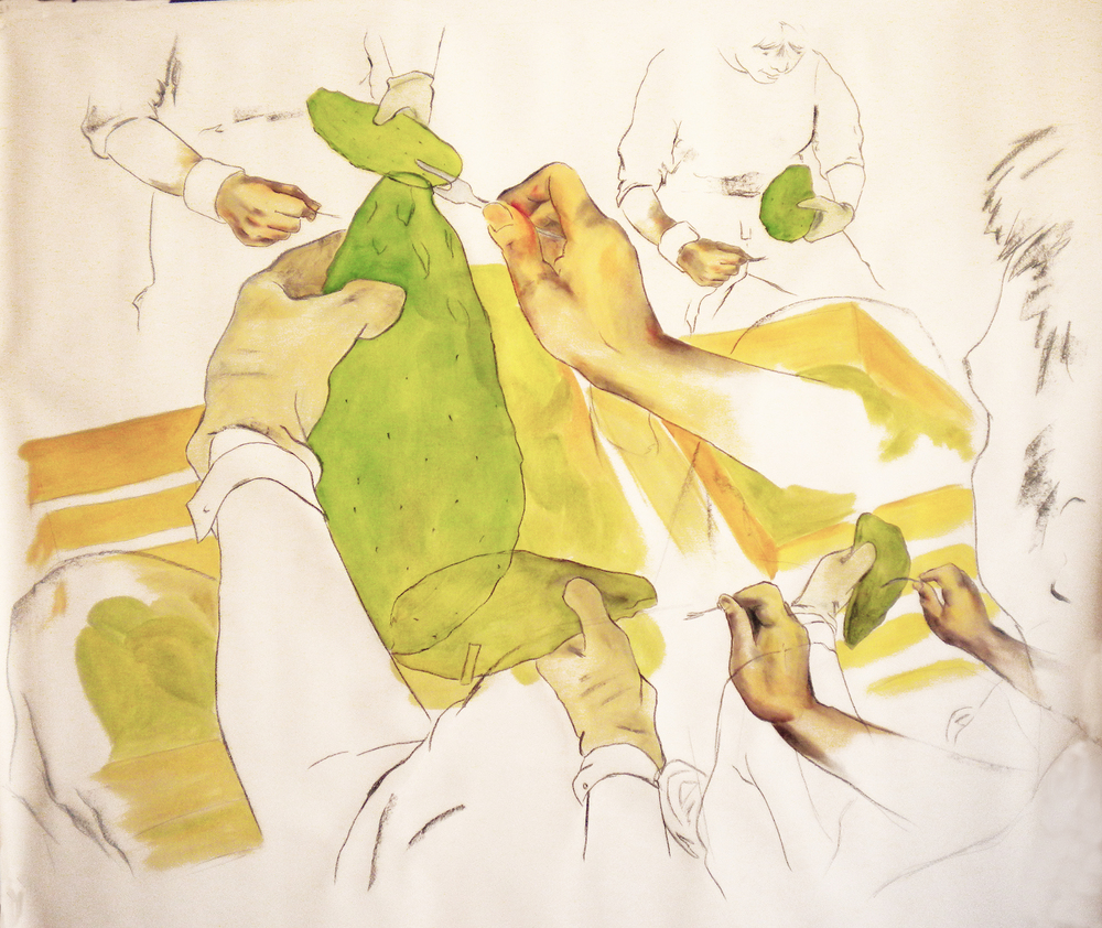 Nopal  2010 mixed media on paper 85 x 110 cm