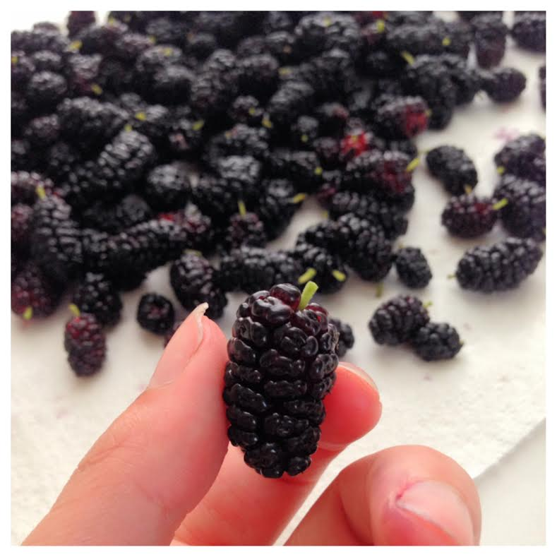 You can see that the individual pods of the berry are actually all different shapes- much different than a blackberry. The stems are very soft and can stay on to be eaten or cooked- they do not have a strong flavor.