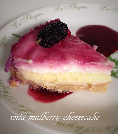 wild mulberry cheesecake