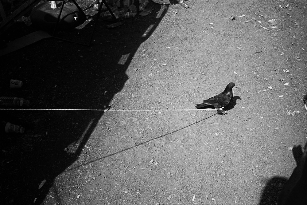 istanbul a selection of my work produced in the city of istanbul / turkey, 2012-2014