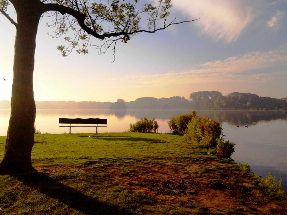 Rotterdam-at-sunrise-Kralingse-Plas-bench.jpg