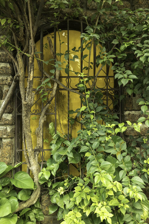 Hidden-yellow-window-in-South-East-Asia.jpg
