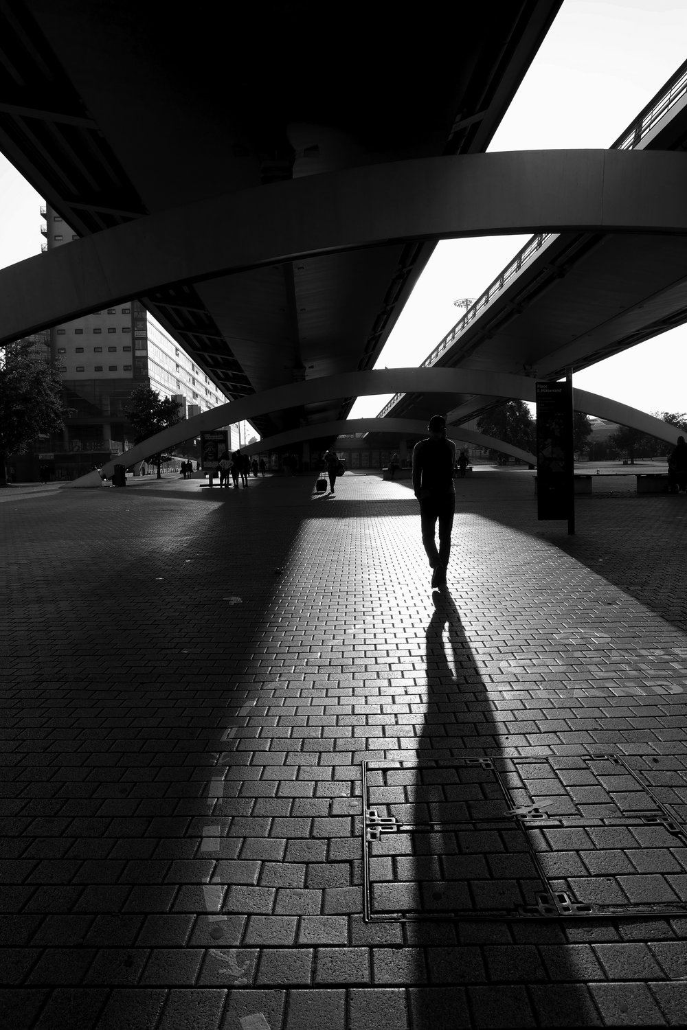 A-black-and-white-shadow-Lille-France.jpg