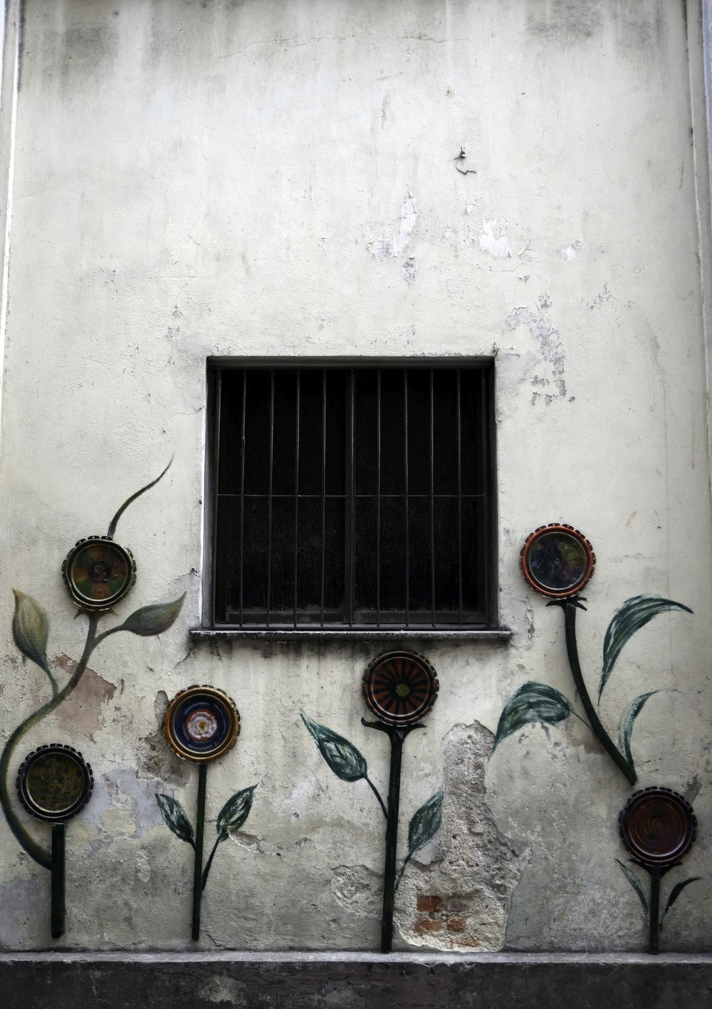 Flowers and a window. Habana, Cuba.jpg