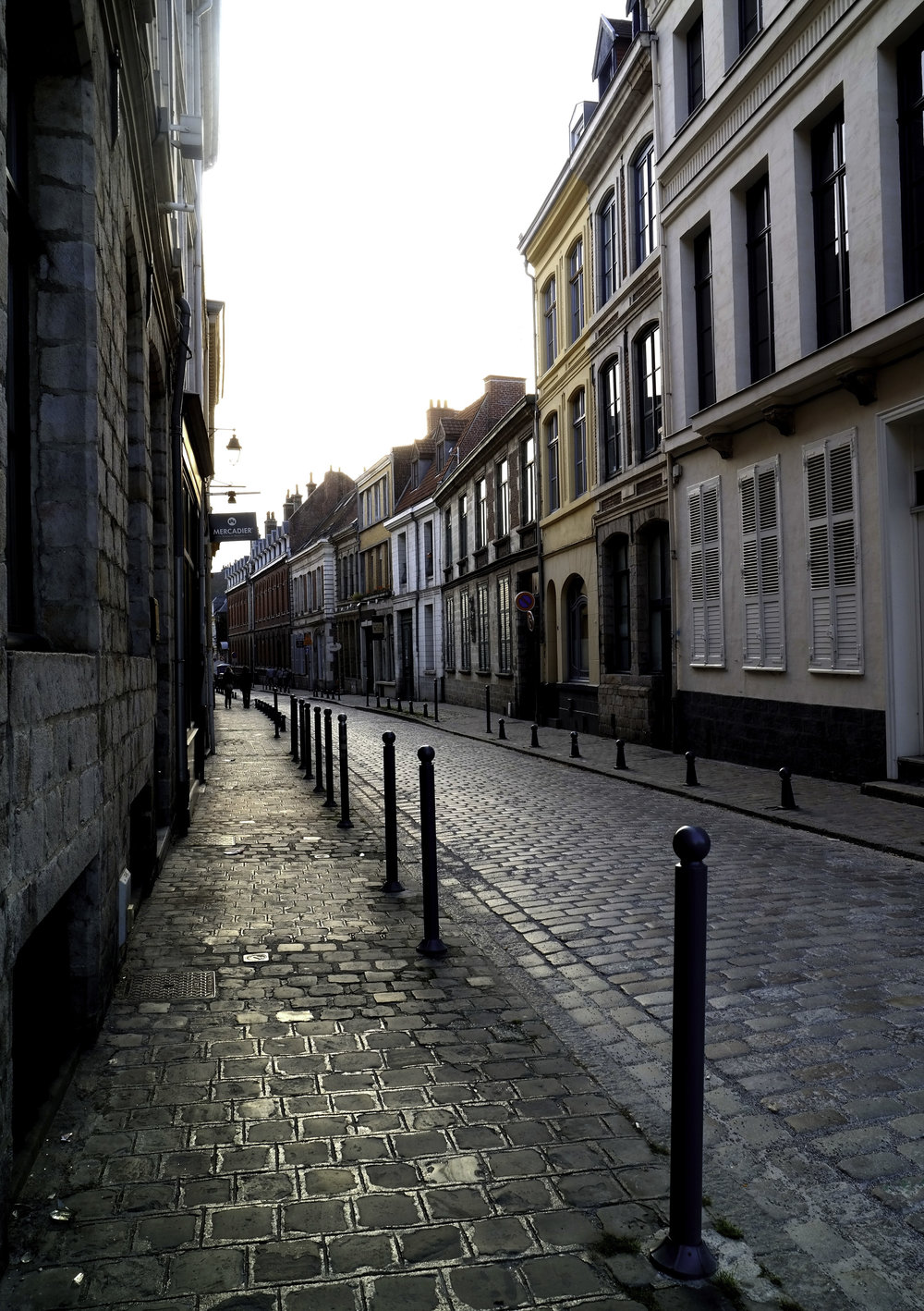 On streets and travelling. Lille, France.jpg