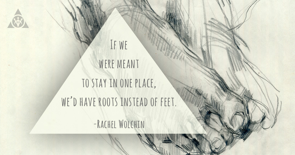 Rachel_Wolchin_Quote
