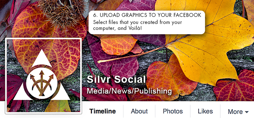 silvr_social_digital_marketing_profile_step6.png