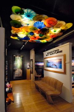 art gallery Maui