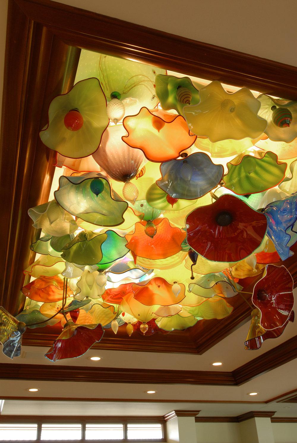 Kohala Coast, Glass Ceiling