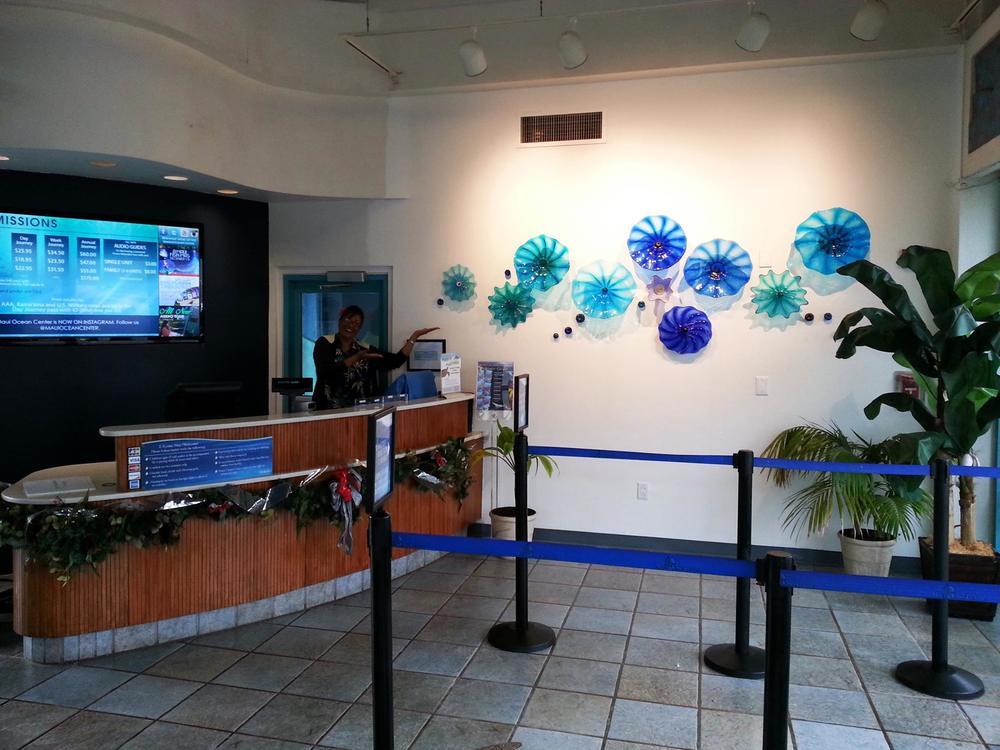 Rick Strini at Maui Ocena Center