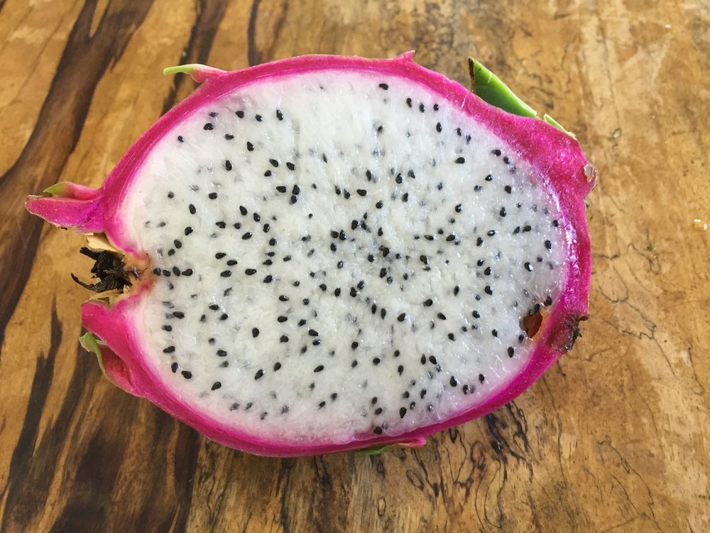 thanks to Barclay Hill for the cuttings.  Dragon Fruit to the max.  soooo goooood.  rick