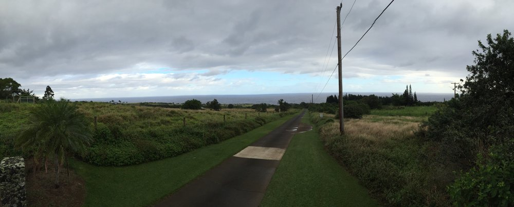 looking towards California and Alaska, Maui, Strini Studios , 2016