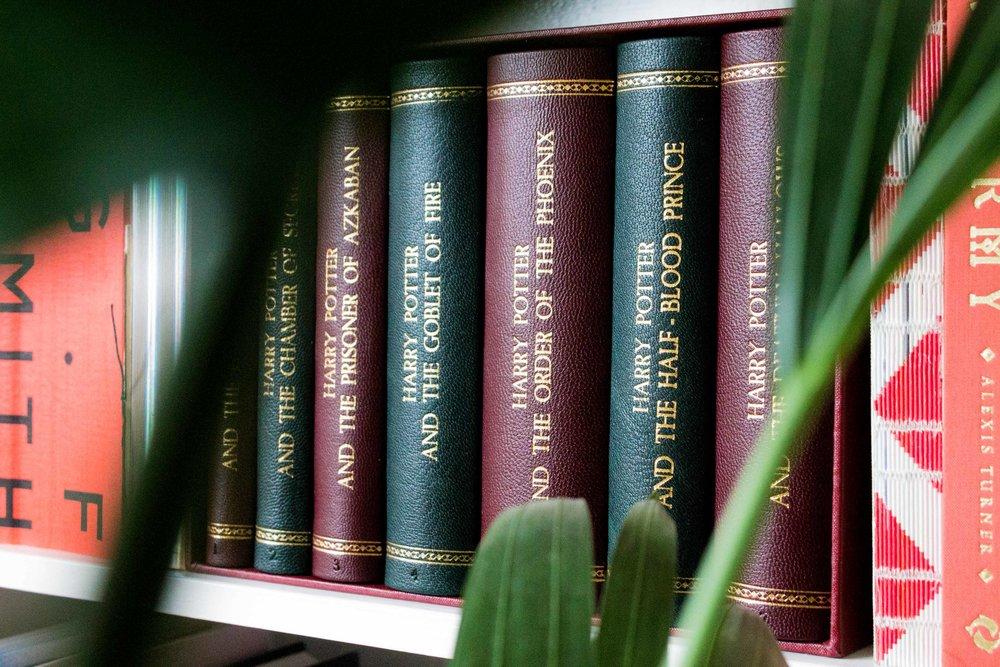 bookshelf-leaf1.jpg