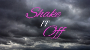 Shake It Off copy.jpg