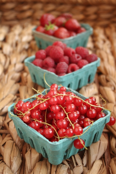 All in season: Red currants, raspberries, strawberries