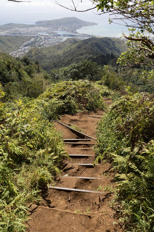The signature steps of Kuliouou ridge