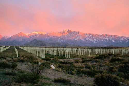 Mendoza, Argentina: Winter