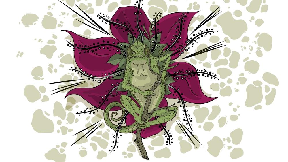 chameleonfix.jpg