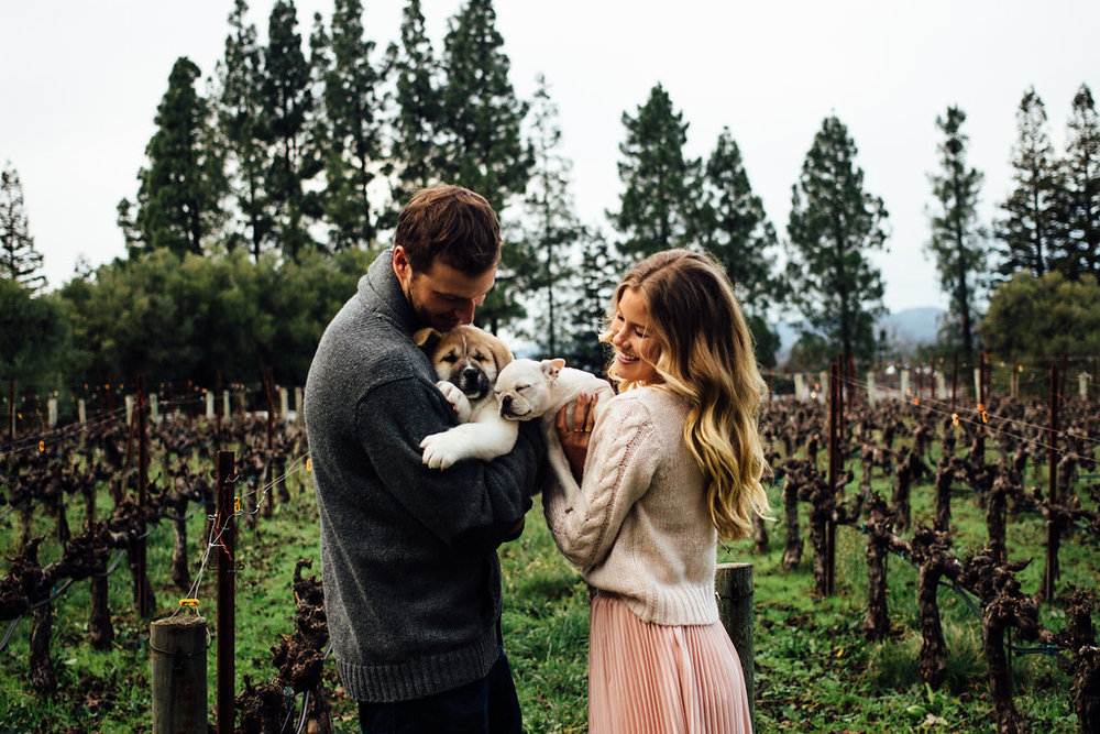 Napa winery anniversary session