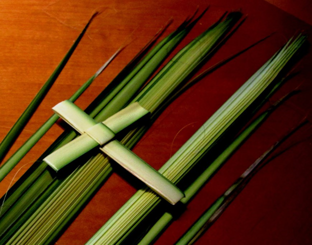 Palm Cross.png