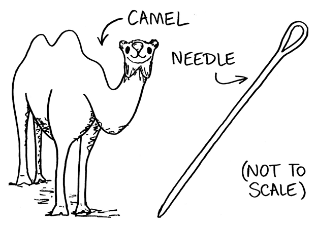 Camel and needle.png