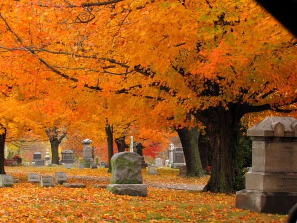 Fall Cemetery 2.png