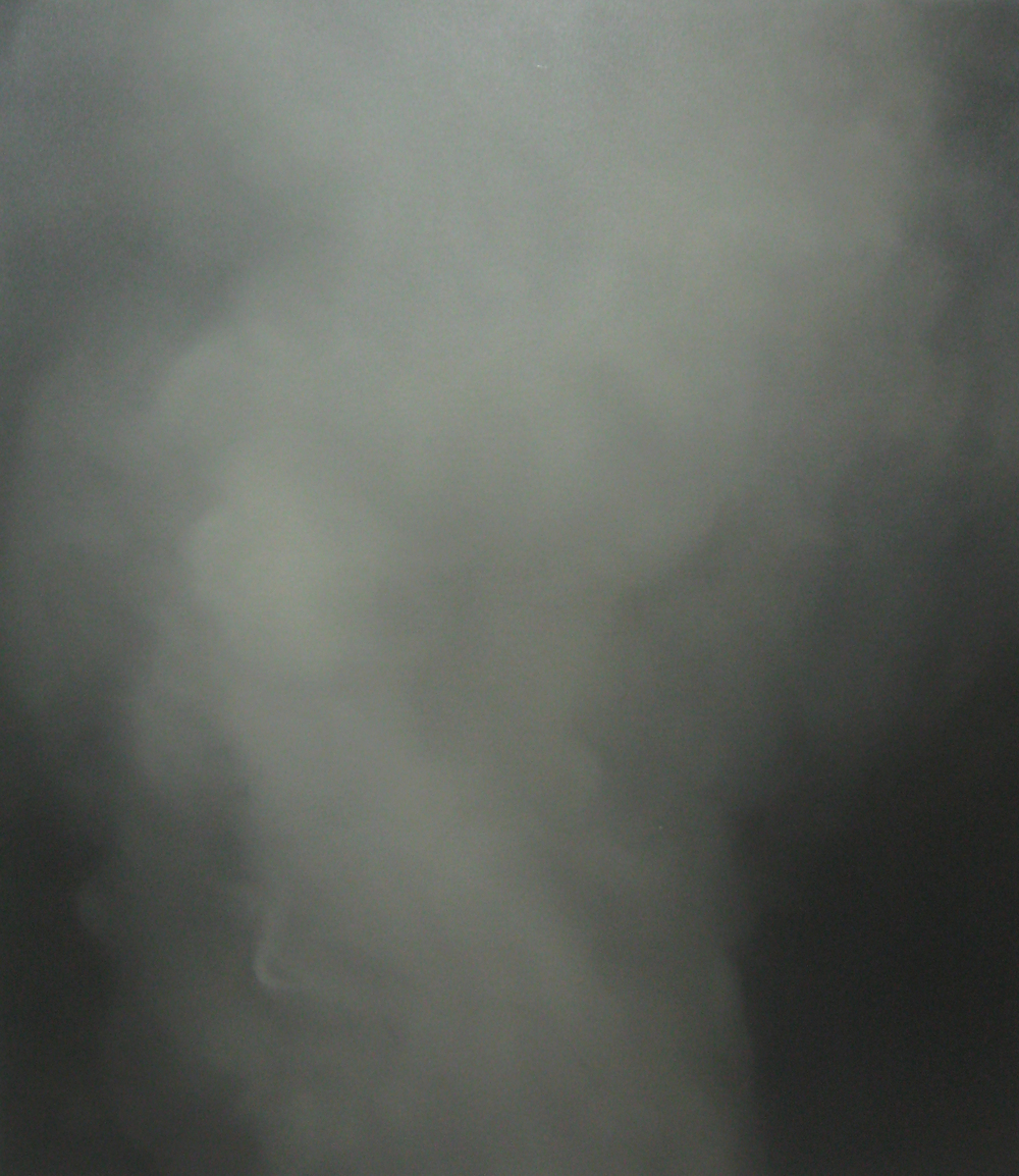 Arryn Snowball