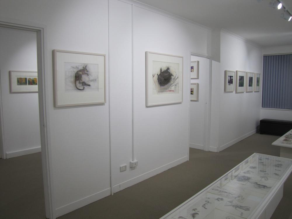 NSG  Janet Dawson exhibition 12.jpg