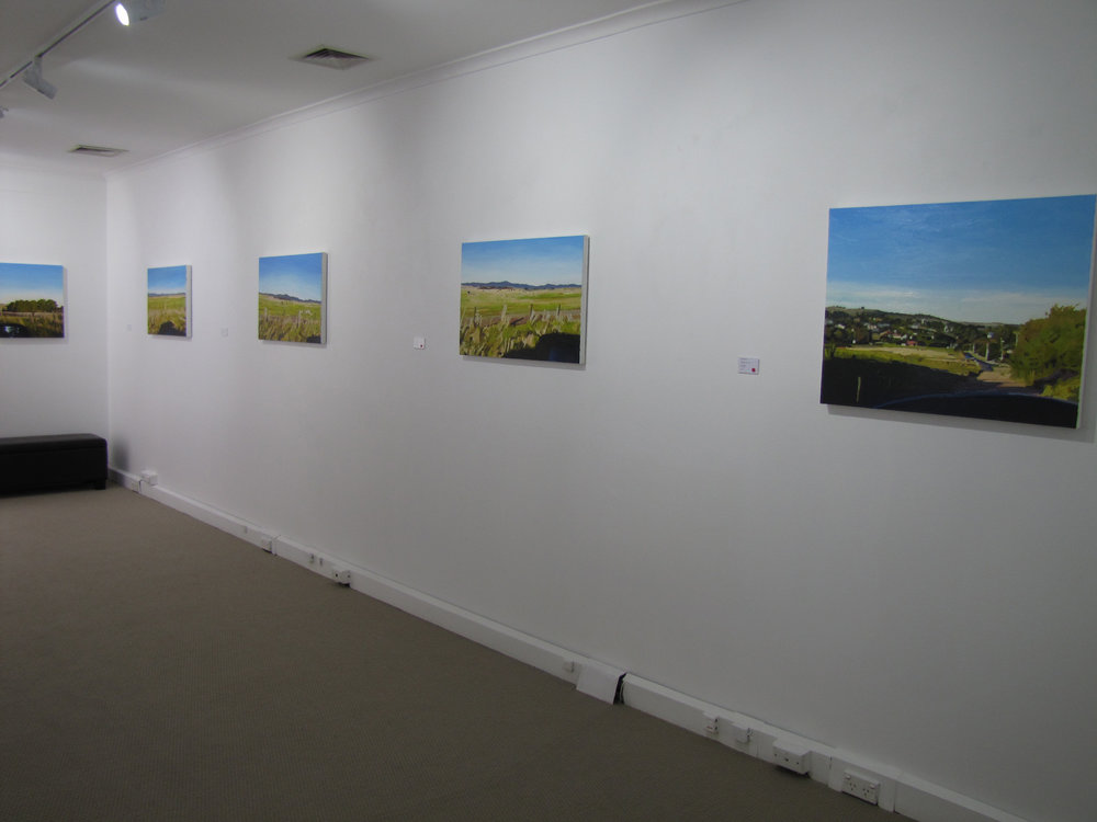 NSG  Stevens exhibition  Exhibition views 1.jpg