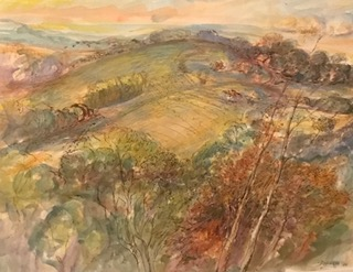 View from my studio, Kurrajong. 2016