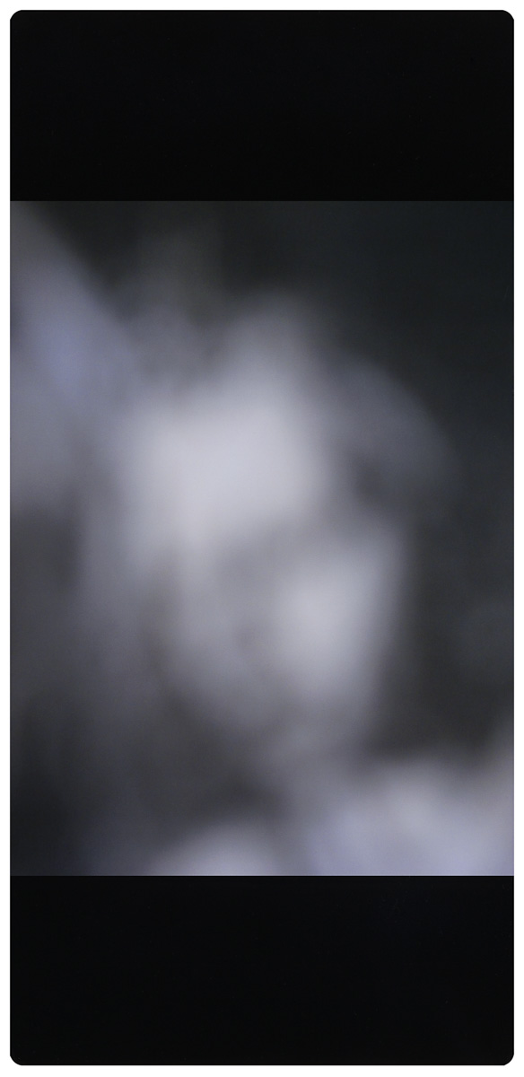 The Ghost of Van Eyck's Angel 2018  Luster print photograph on HIPS  41 X 20 cm  Edition of 3  $1200 each