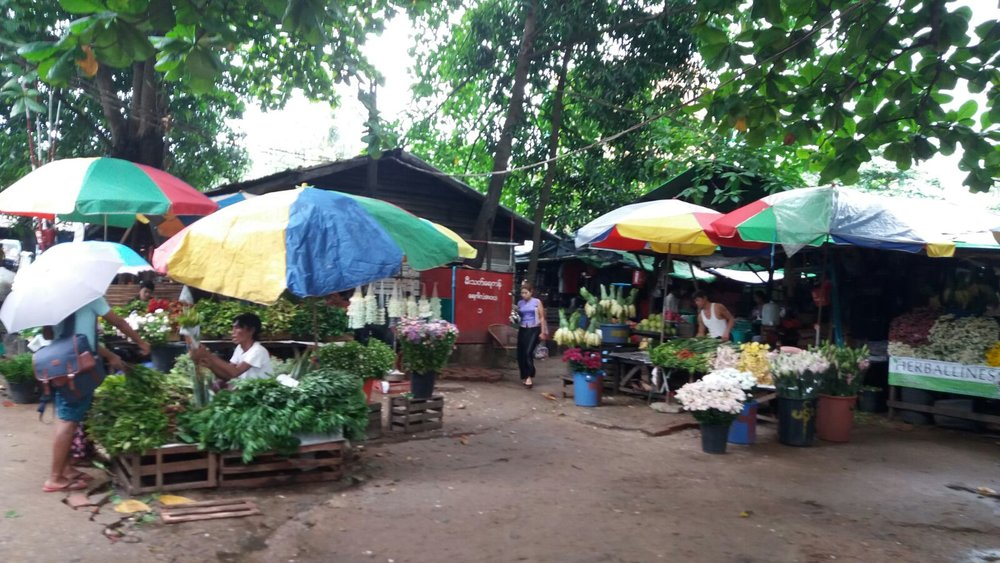 The local daily wet market, open for business!