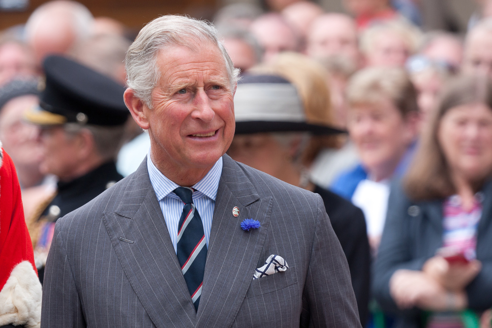 By Dan Marsh (Flickr: Prince Charles) [CC BY-SA 2.0 (http://creativecommons.org/licenses/by-sa/2.0)], via Wikimedia Commons.