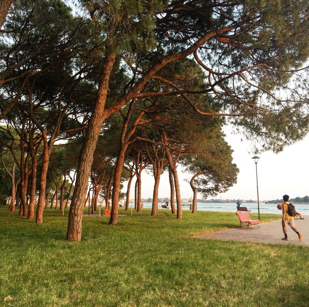 Giardini - away from the hustle and bustle, yet near the Biennale.