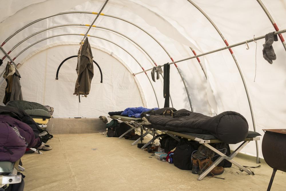LupinBay-Alaska-Camp Tent-2180.jpg