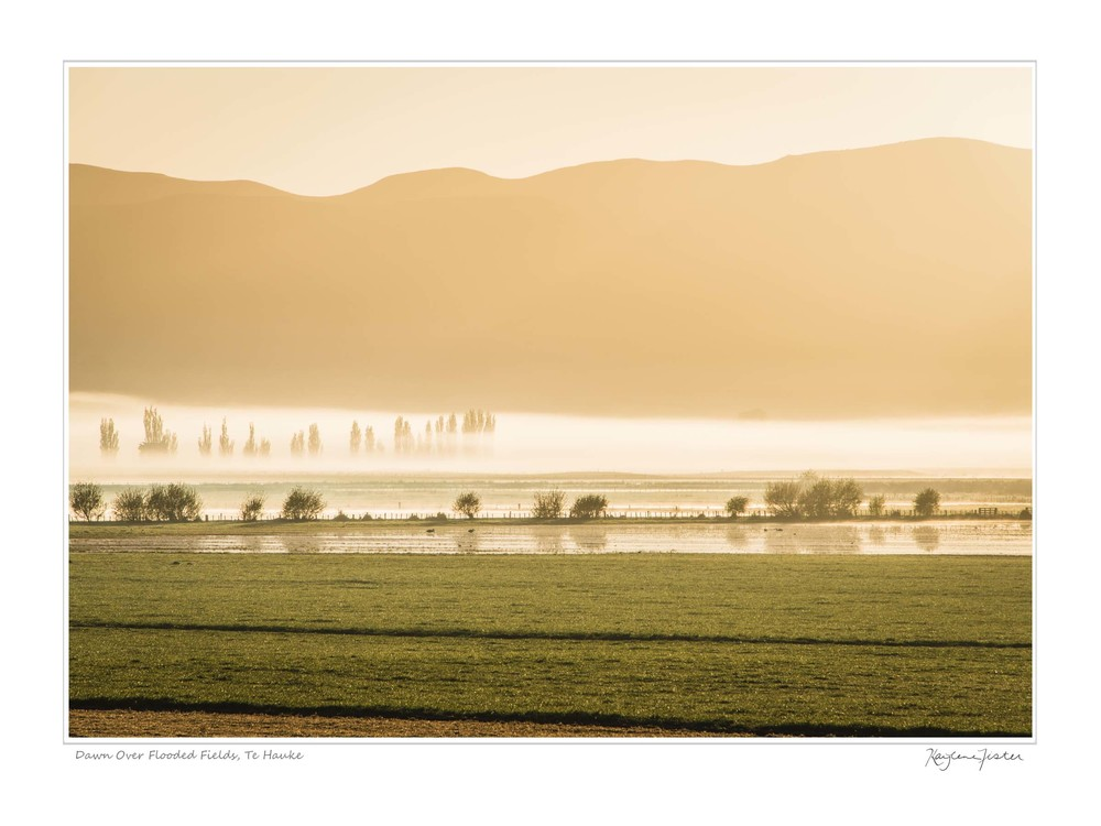 0061:4394 Dawn Over Flooded Fields, Te Hauke