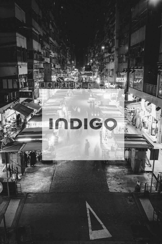PARK-INDIGO-1.png