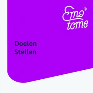 doelen_stellen.png