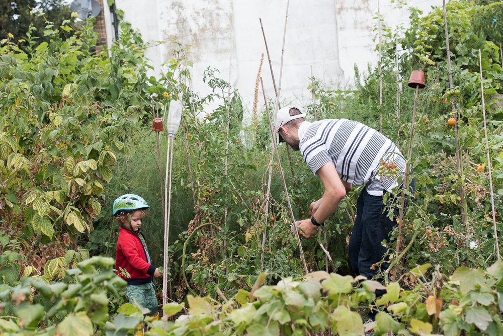 Vauxhall City Farm_14.jpg