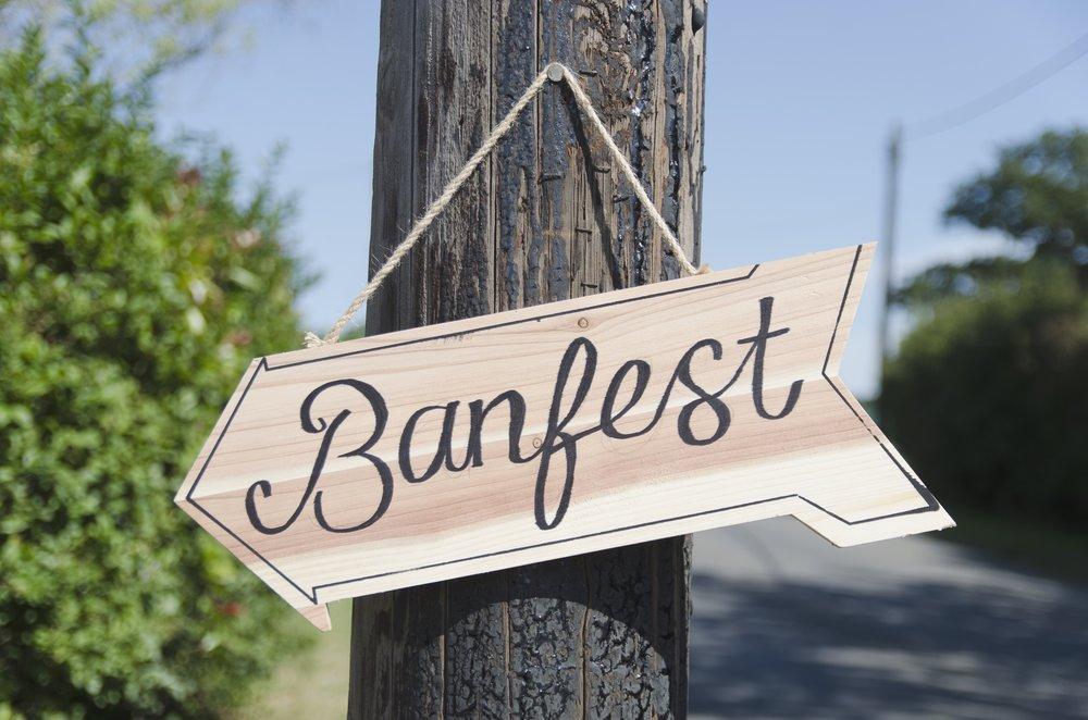banfest-2015_19842157083_o.jpg