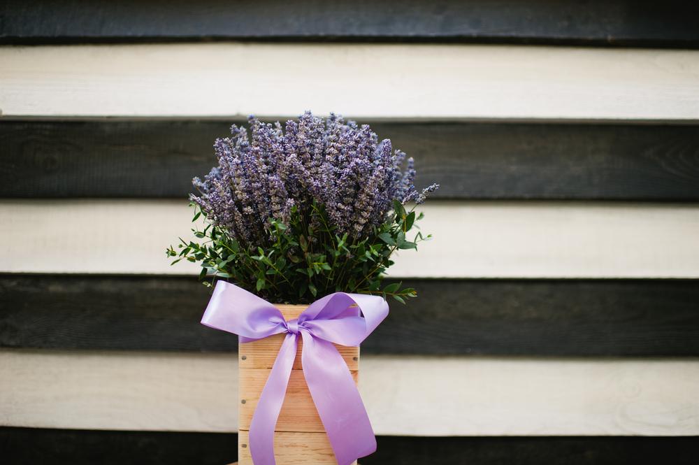Classic Lavender BD20
